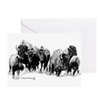 Buffalo Herd Greeting Cards (Pk of 10)