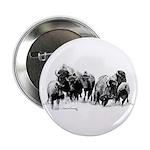 Buffalo Herd 2.25