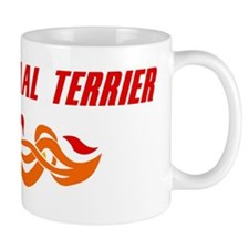 Glen of Imaal Terrier (fire d Mug