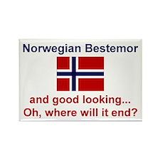 Gd Lkg Norwegian Bestemor Rectangle Magnet