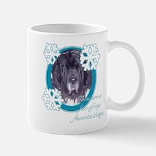winter newfy Mug