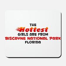 Hot Girls: Biscayne Nat, FL Mousepad