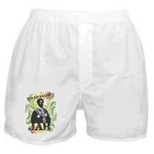 HIS EXCELLENCY Boxer Shorts