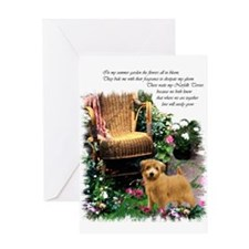 Norfolk Terrier Art Greeting Card