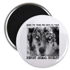 Report Animal Cruelty Dog Magnet