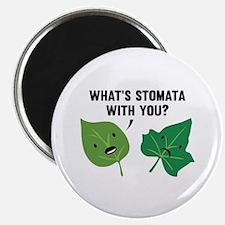 """Stomata 2.25"""" Magnet (100 pack)"""