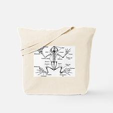 Frog Anatomy Tote Bag