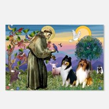 St Francis & Collie Pair Postcards (Package of 8)