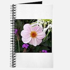 Pinks In Versailles Garden Journal