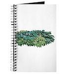 Hosta Clumps Journal