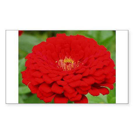 Red Zinnia Rectangle Sticker