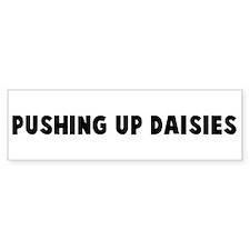 Pushing up daisies Bumper Bumper Sticker