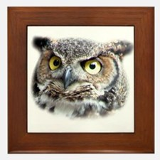 Great Horned Owl Face Framed Tile