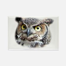 Great Horned Owl Face Rectangle Magnet