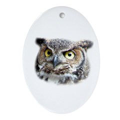 Great Horned Owl Face Oval Ornament
