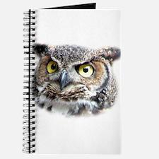 Great Horned Owl Face Journal