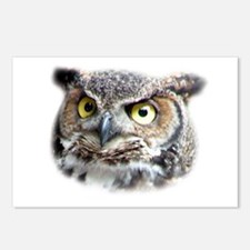 Great Horned Owl Face Postcards (Package of 8)