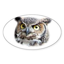 Great Horned Owl Face Oval Decal