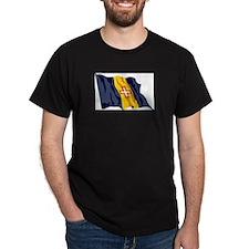 Madeira Flag T-Shirt