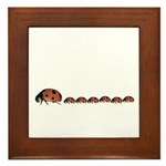 Ladybug Mother Framed Tile