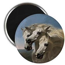 White Arabian Horses. Magnet
