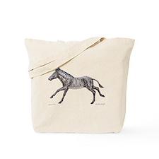 Grevy's Zebra ~ Tote Bag