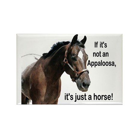 If Not Appaloosa-1 Rectangle Magnet (10 pack)