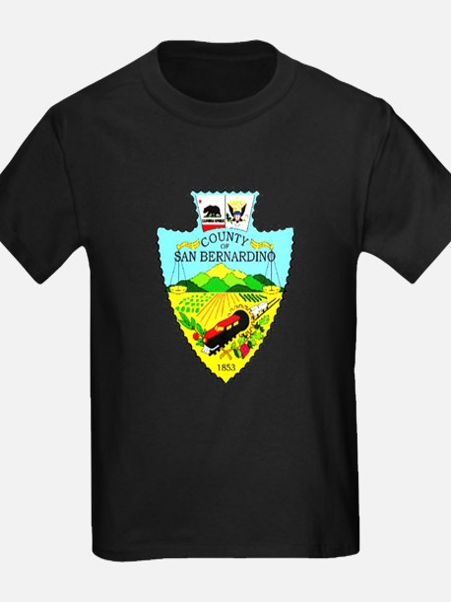 Berdoo County T