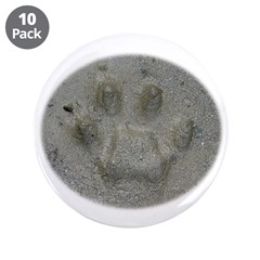 Real Cat Track 3.5