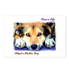 Save a Life - Adopt a Shelter Postcards (Package o