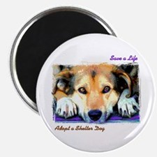 Save a Life - Adopt a Shelter Magnet