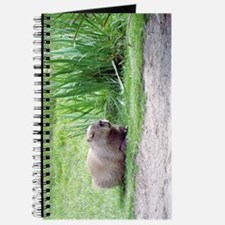 Capybara Laying Down Journal