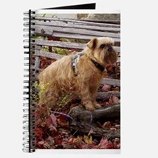 Red Rough Brussels Griffon Journal