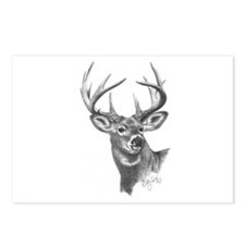 White-Tailed Deer Postcards (Package of 8)