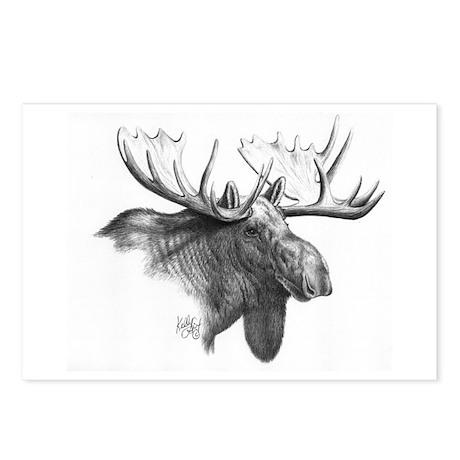Moose Postcards (Package of 8)