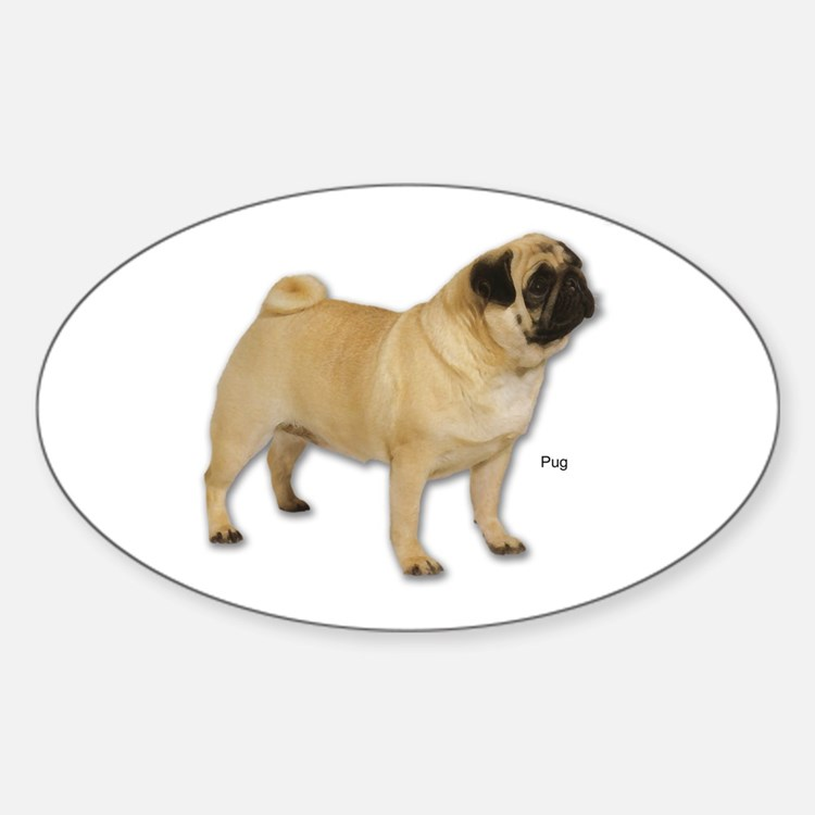 Pug Dog for Pugs Lovers Oval Decal