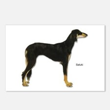 Saluki Dog Postcards (Package of 8)