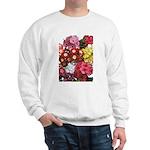 Mucho Phlox Sweatshirt