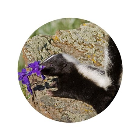 """Skunk 3.5"""" Button (100 pack)"""