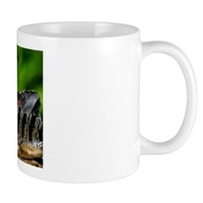 Sunbittern Mug