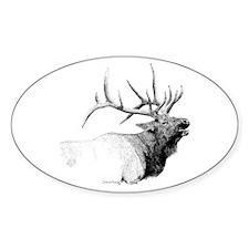Bull Elk Oval Decal