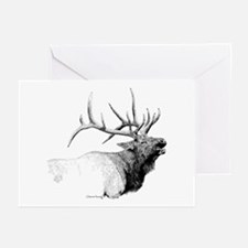 Bull Elk Greeting Cards (Pk of 20)
