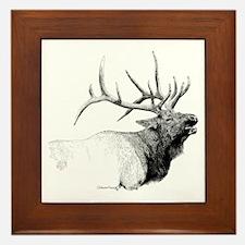 Bull Elk Framed Tile