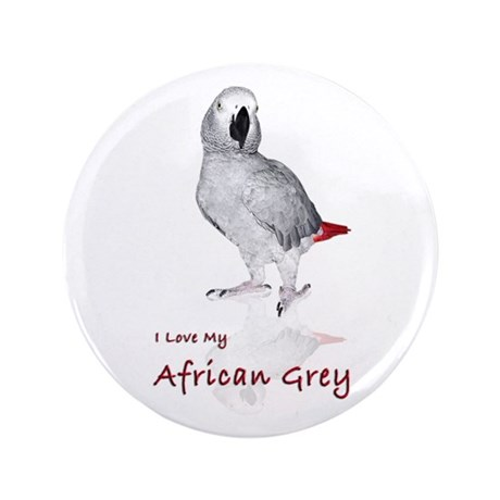 "i love african greys 3.5"" Button (100 pack)"