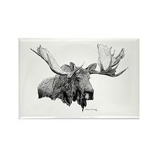 Bull Moose Rectangle Magnet