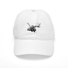 Bull Moose Baseball Cap