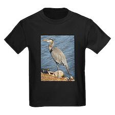 Great Blue Heron T