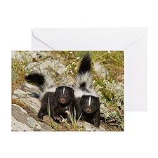 Skunk Greeting Cards (Pk of 20)