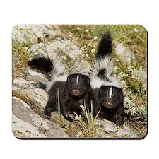 Skunk Mousepad