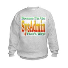 Because I'm the SysAdmin Jumper Sweater